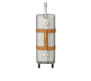 Hermes Orion carry-on luggage