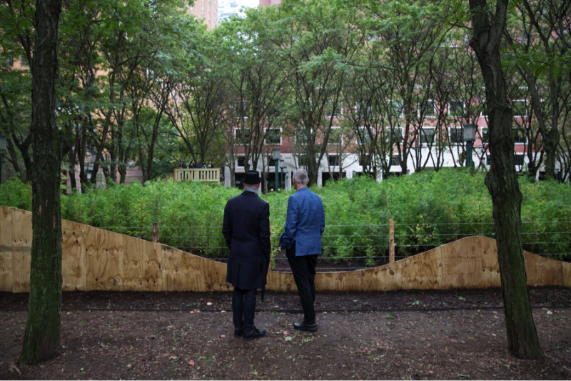 Two men stop to look at a miniature forest in New York created by artist Spencer Finch.
